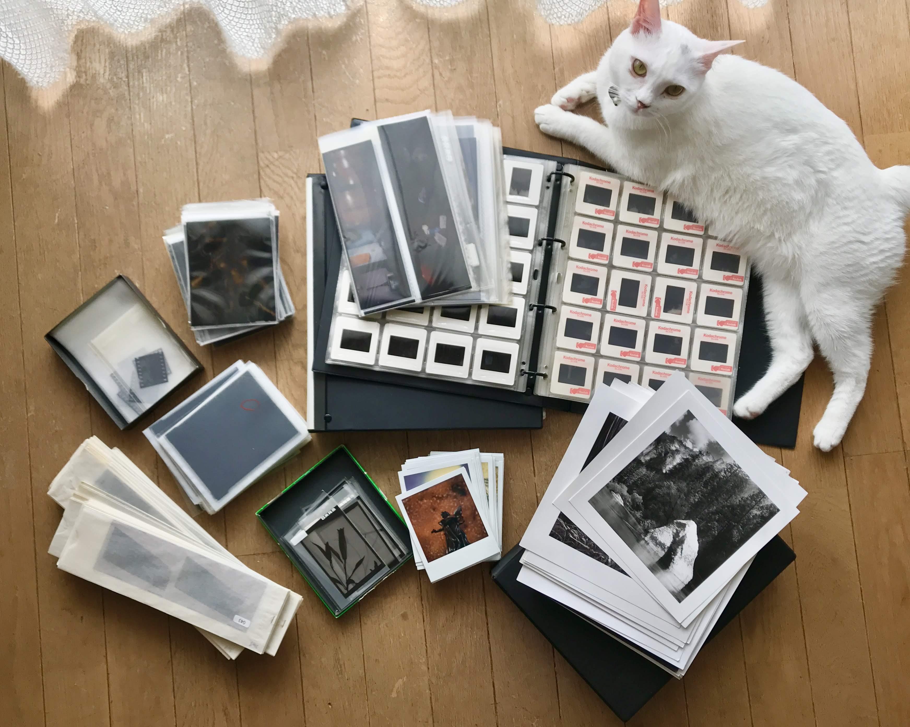 眠っている古いフィルム、写真をスキャニングでデジタル化!