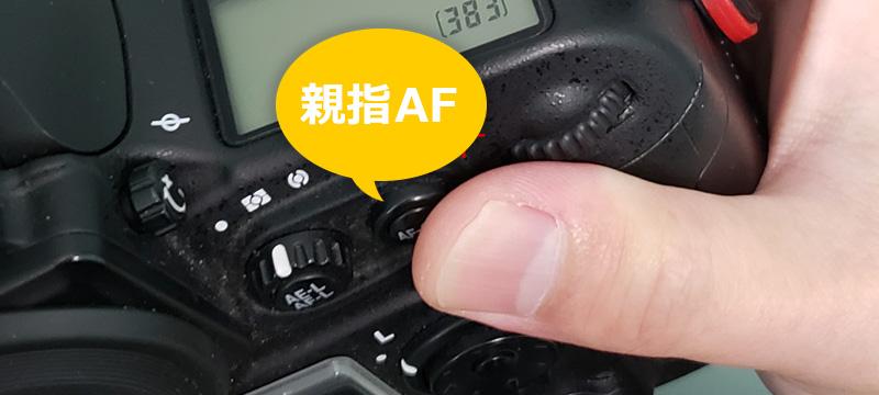 【プロも使うテクニック】親指AF(バックボタンオートフォーカス)の利点と設定