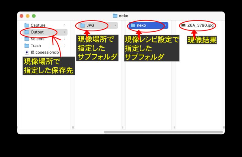 現像場所で指定した保存先/現像場所で指定したサブフォルダ/現像レシピ設定で指定したサブフォルダ/現像結果