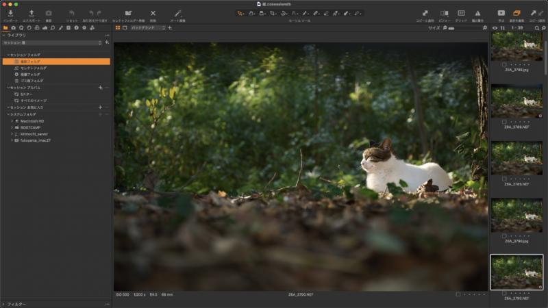 デスクトップに「ねこスナップ」フォルダを作り、その中に「猫」セッションを作っての解説